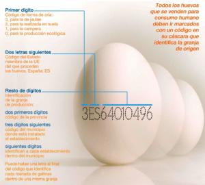 codigo-huevos