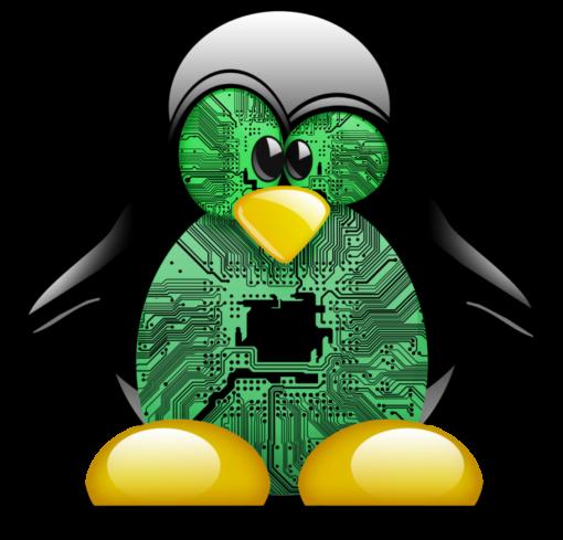 Certificado SSL en nginx por SSH